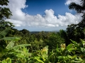 Aussicht aus El Yunque