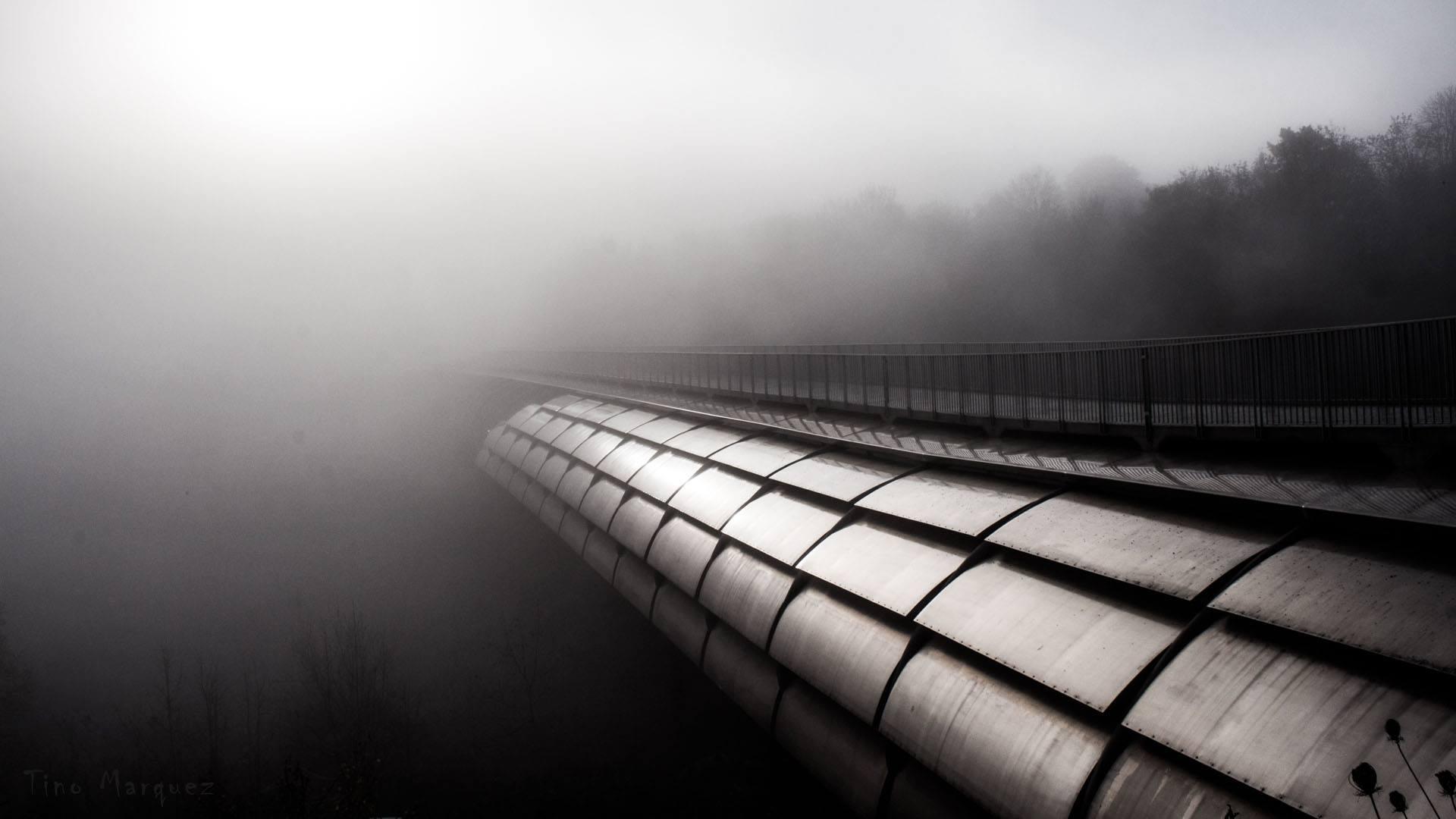 Vaihingen im Nebel