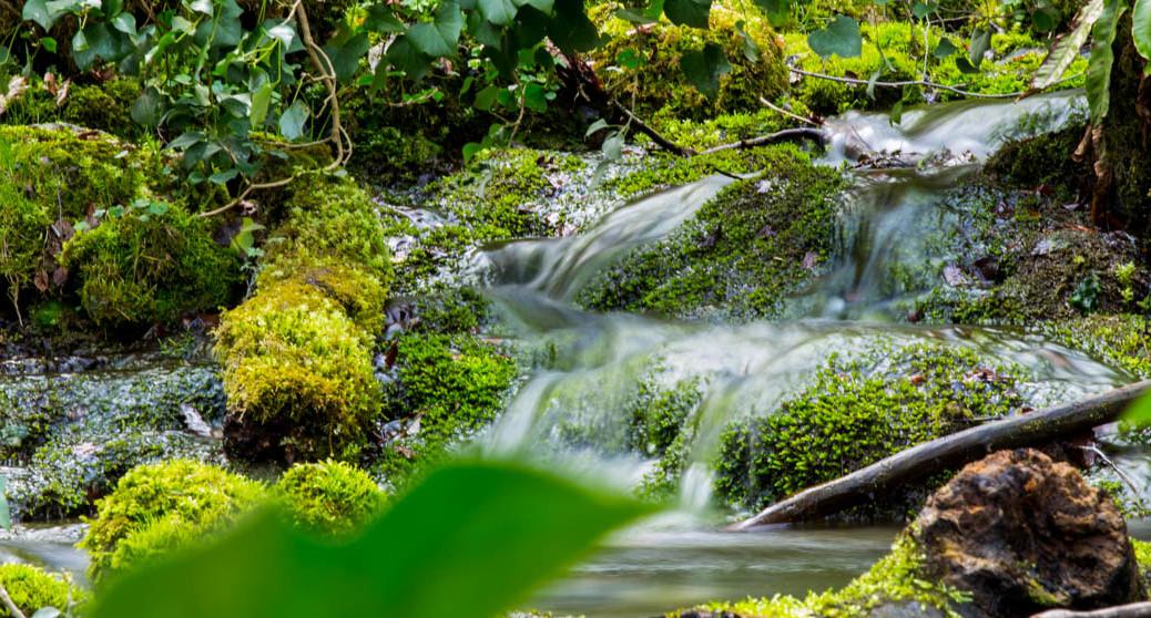 Wasserlauf in Bad Urach