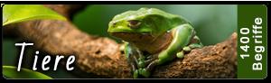 Lightroom Stichwortliste Tiere